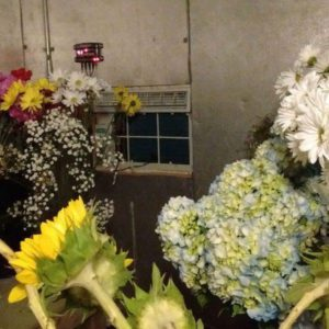 coldroom-with-split-AC-for-flowers