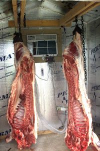 coldroom-with-split-AC-for-meat-and-poultry